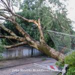 Apeldoorn getroffen door windhoos,veel omgewaaide bomen