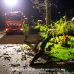 Stormschade: Flinke tak afgebroken Meerkoetweg Apeldoorn